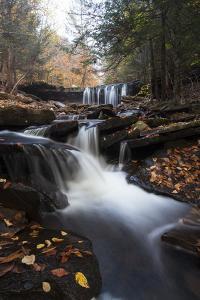 Oneida Waterfall in Ricketts Glenn State Park by Gabby Salazar