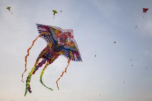 Thousands of People Gather to Fly Kites on Side of the Highway Outside the City of Hanoi, Vietnam by Gabby Salazar