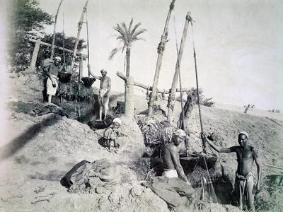 Shadufs in Upper Egypt, late 19th century