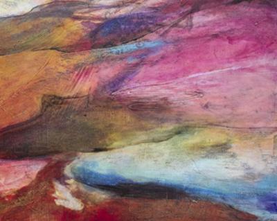 Fuchsia Expression I by Gabriela Villarreal