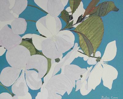 Cherry Blossoms (Fleurs de Cerisier)