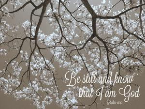 Be Still by Gail Peck