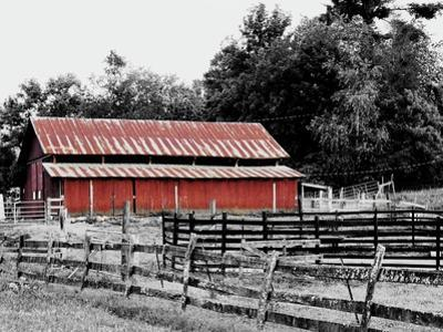 BW Rustic Barn by Gail Peck