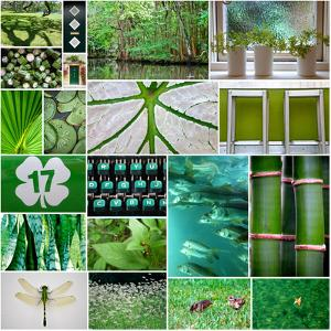 Forest Green Collage by Gail Peck