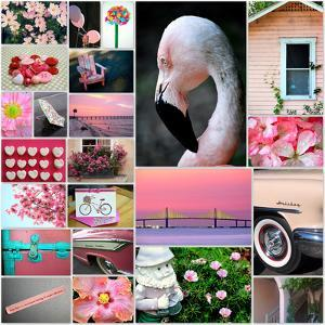 Pink Flamingo Collage by Gail Peck