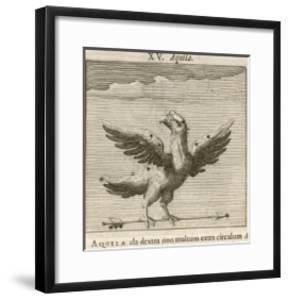 Aquila the Eagle by Gaius Julius Hyginus