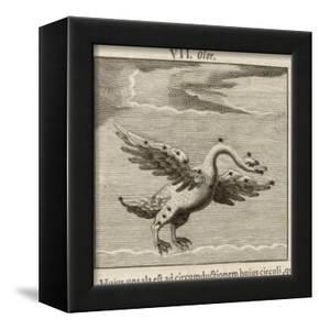 Olor the Swan by Gaius Julius Hyginus