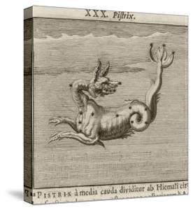 The Constellation of Pistrix the Sea Monster by Gaius Julius Hyginus