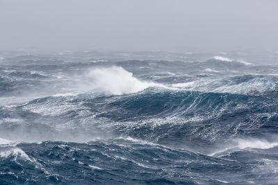 Gale Force Westerly Winds Build Large Waves in the Drake Passage, Antarctica, Polar Regions-Michael Nolan-Photographic Print