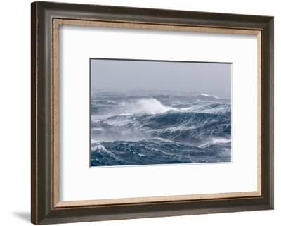 Gale Force Westerly Winds Build Large Waves in the Drake Passage, Antarctica, Polar Regions-Michael Nolan-Framed Photographic Print