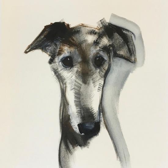 Galgo Espanol-Sally Muir-Giclee Print