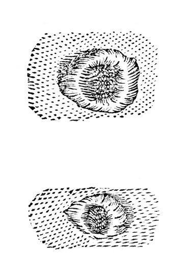 Galileo's Drawing of Lunar Craters, 1611-Galileo Galilei-Giclee Print