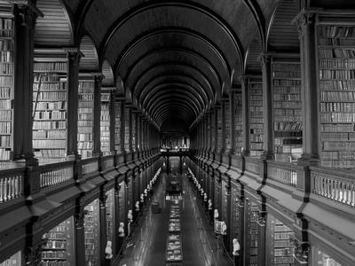 https://imgc.artprintimages.com/img/print/gallery-of-the-old-library-trinity-college-dublin-county-dublin-eire-ireland_u-l-pxmuvl0.jpg?p=0