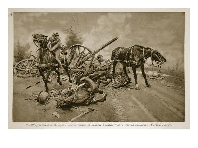 Gallipoli: Horses Rescued by Munster Fusiliers from a Waggon Shattered by Turkish Gun Fire, 1914-19--Giclee Print