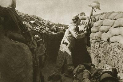 Gallipoli--Photographic Print