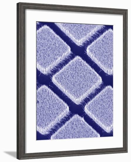 Gallium Nitride Nanowires, SEM-Peidong Yang-Framed Premium Photographic Print