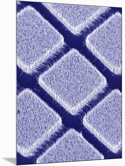 Gallium Nitride Nanowires, SEM-Peidong Yang-Mounted Premium Photographic Print