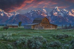 Grand Teton Mormon Barn at Sunrise by Galloimages Online