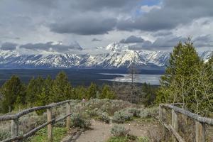 Jackson Lake Overlook GTNP by Galloimages Online