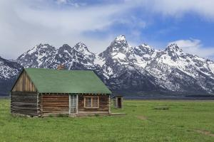 Mormon Row Log Cabin by Galloimages Online