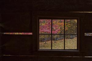 Roaring Fork Cabin Window by Galloimages Online