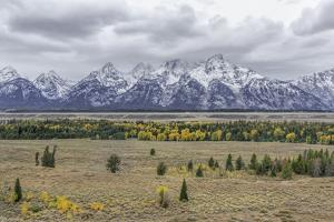 Teton Fall Colors by Galloimages Online