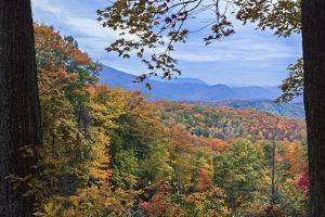 Window To The Smoky Mountains by Galloimages Online