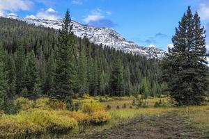 Yellowstone Sbc Landscape by Galloimages Online