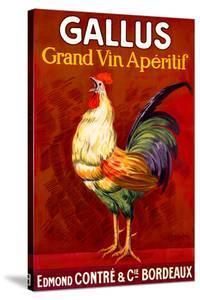 Gallus, Grand Vin Apertif