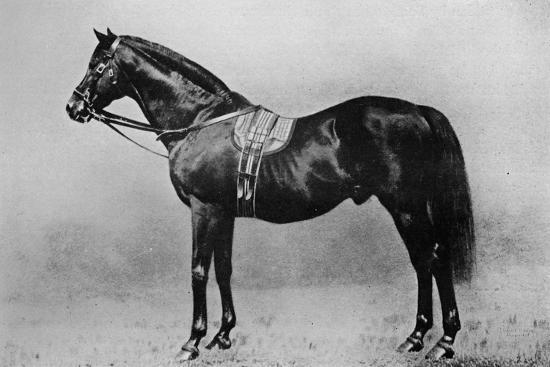 'Galopin, 1872-1899, (1911)-Unknown-Giclee Print