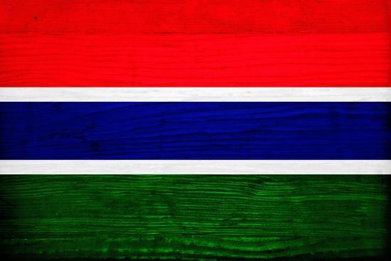 Gambia Flag Design with Wood Patterning - Flags of the World Series-Philippe Hugonnard-Art Print