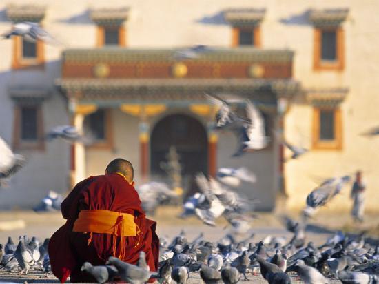 Gandan Khiid Monastery, Ulaan Baatar, Mongolia-Peter Adams-Photographic Print