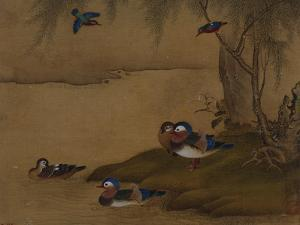 A Pair of Falcons. from an Album of Bird Paintings by Gao Qipei