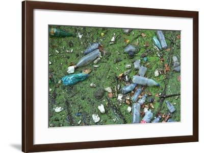 Garbage in River-Hans Peter Merten-Framed Photographic Print