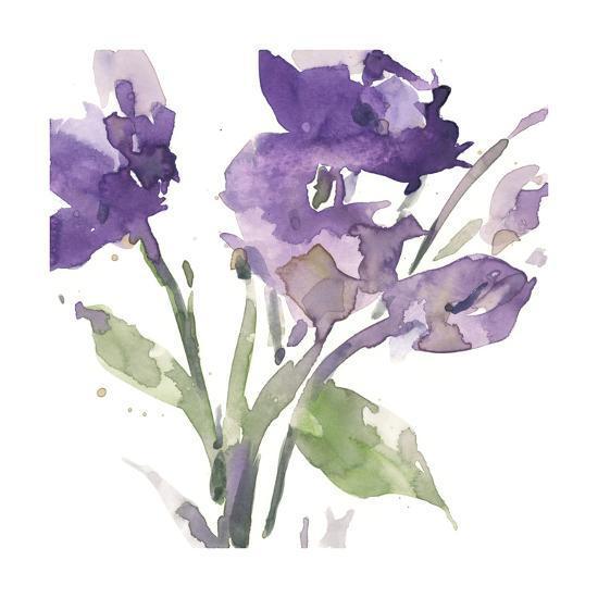 Garden Blooms I-Samuel Dixon-Limited Edition