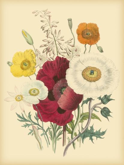 Garden Bouquet II-Jane W^ Loudon-Art Print