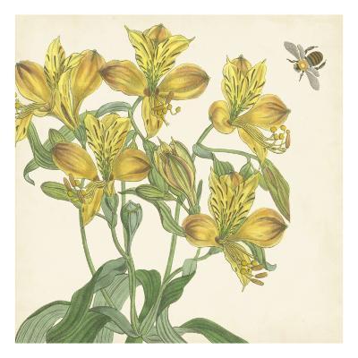 Garden Delight VI--Art Print