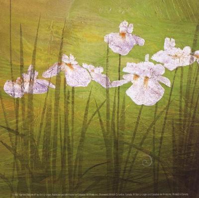 Garden Delights II-Don Li-Leger-Art Print