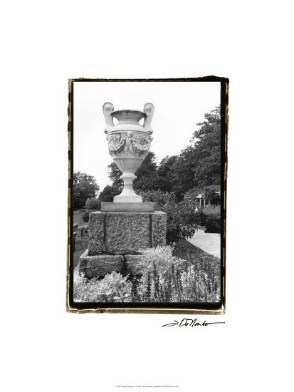 Garden Elegance V-Laura Denardo-Art Print