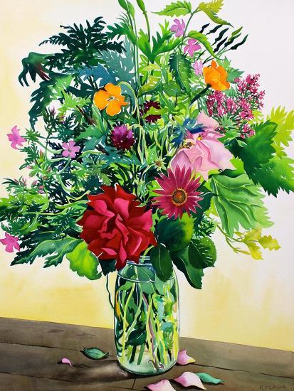 Garden Flowers-Christopher Ryland-Giclee Print