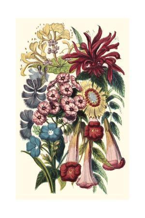 https://imgc.artprintimages.com/img/print/garden-gathering-i_u-l-q1bgqwp0.jpg?p=0