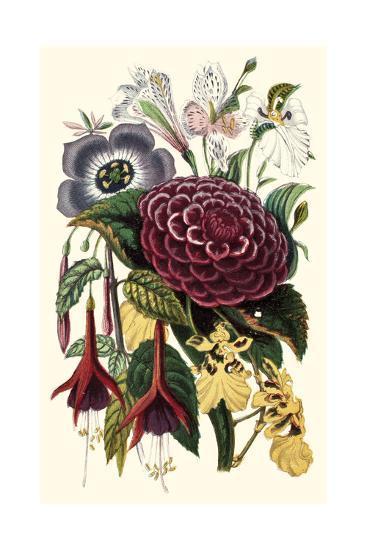 Garden Gathering II--Art Print