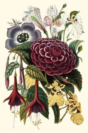 https://imgc.artprintimages.com/img/print/garden-gathering-ii_u-l-q1bgqqu0.jpg?p=0