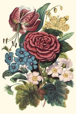https://imgc.artprintimages.com/img/print/garden-gathering-iii_u-l-q1bgqno0.jpg?p=0