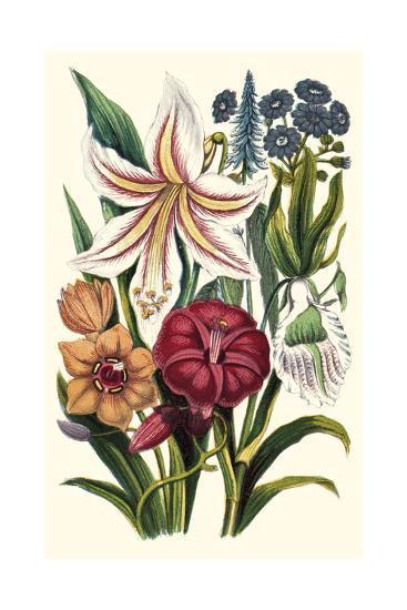 Garden Gathering V--Art Print