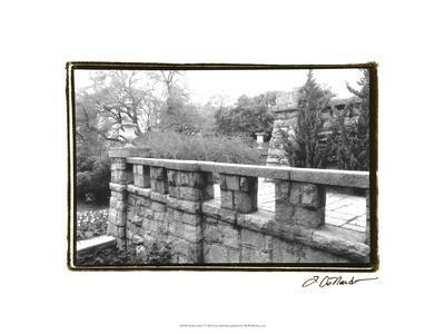 https://imgc.artprintimages.com/img/print/garden-grace-i_u-l-pfrugc0.jpg?p=0