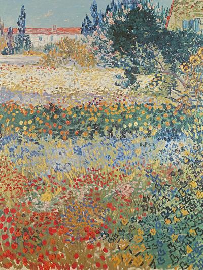 Garden in Bloom, Arles, c.1888-Vincent van Gogh-Giclee Print