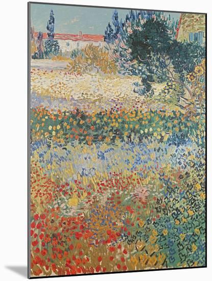 Garden in Bloom Arles, c.1888-Vincent van Gogh-Mounted Giclee Print