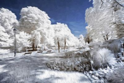 Garden in Winter - In the Style of Oil Painting-Philippe Hugonnard-Giclee Print