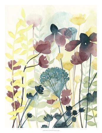 https://imgc.artprintimages.com/img/print/garden-lace-i_u-l-f8k2ec0.jpg?p=0